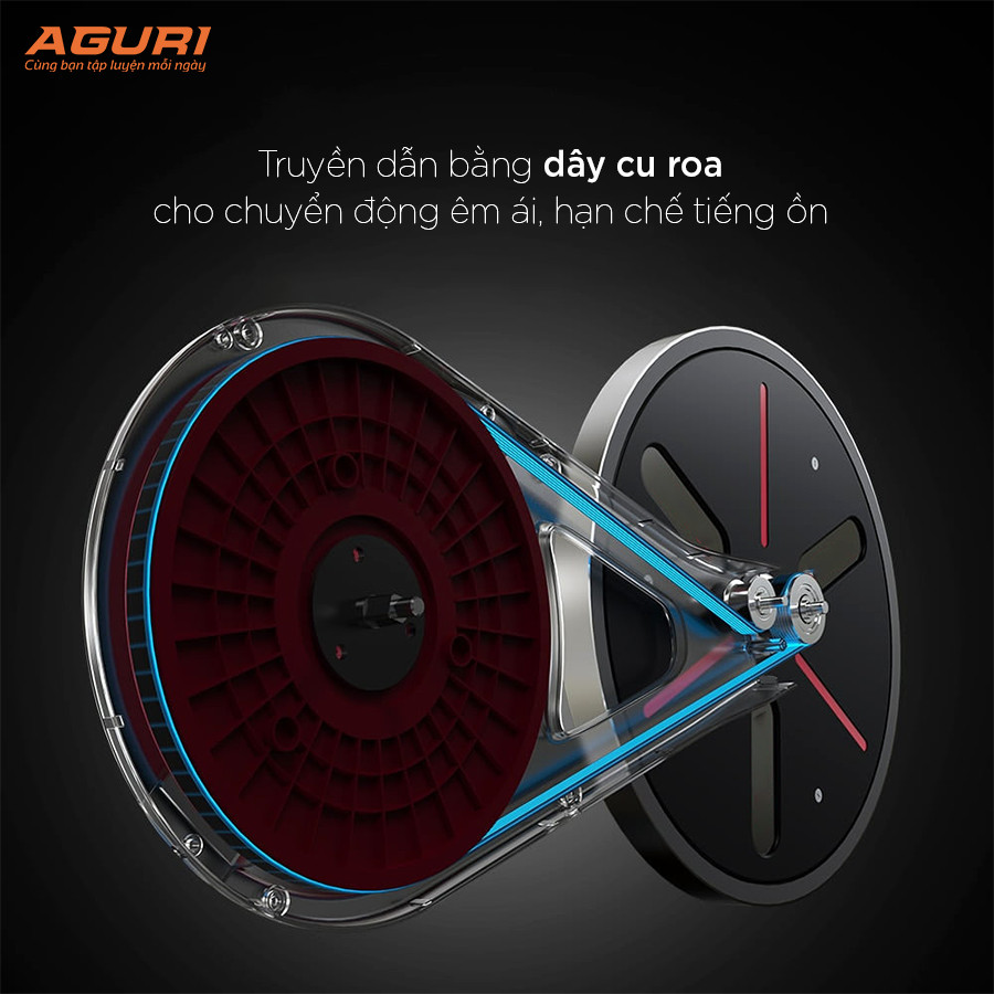 Xe đạp tập tại nhà không tiếng ồn AGS-211